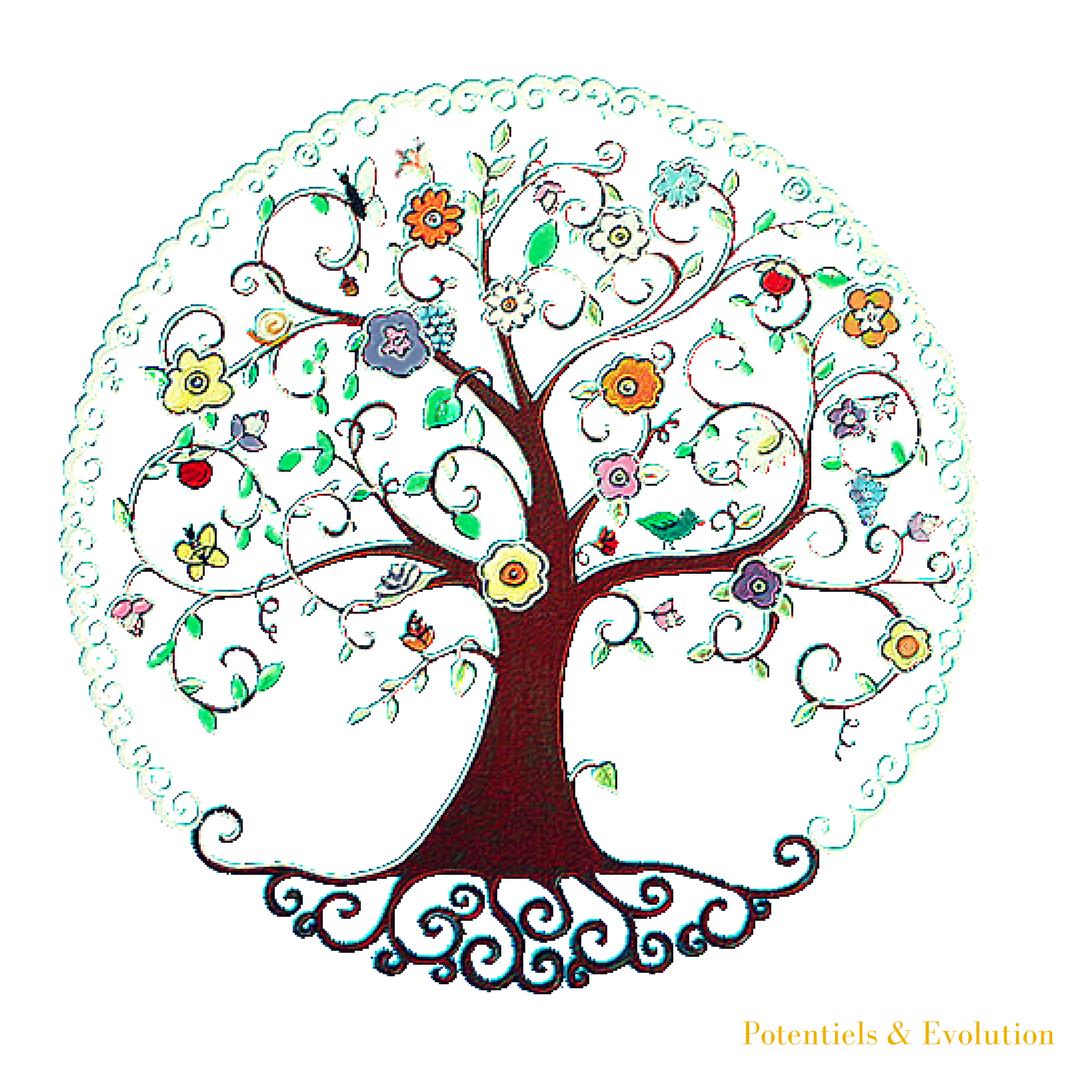 arbre sophrologie evolution